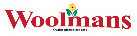 Woolmans Quality Chrysanthemums and Plants Since 1881